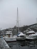 Balllard in the snow 004