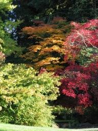 Fall in the Arboretum 049